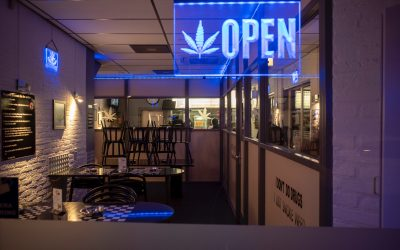 Cannabis and ERPs – The Business Side of Progress